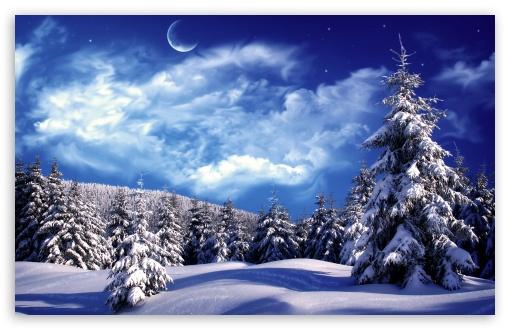 Moonlight Over Snowy Forest ❤ 4K UHD Wallpaper for Wide 16:10 5:3 Widescreen WHXGA WQXGA WUXGA WXGA WGA ; 4K UHD 16:9 Ultra High Definition 2160p 1440p 1080p 900p 720p ; Mobile 5:3 16:9 - WGA 2160p 1440p 1080p 900p 720p ;