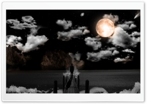 Moonlit Night HD Wide Wallpaper for Widescreen