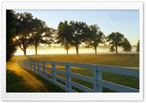 Morning at a Ranch HD Wide Wallpaper for Widescreen