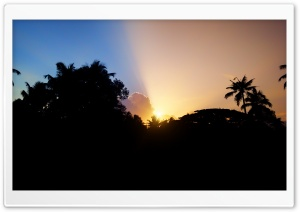 Morning Bliss HD Wide Wallpaper for Widescreen