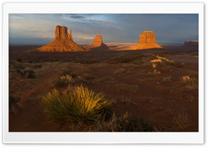 Morning In Utah Desert HD Wide Wallpaper for 4K UHD Widescreen desktop & smartphone