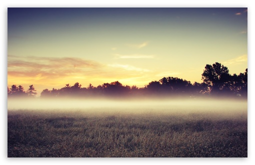 Morning Mist HD wallpaper for Wide 16:10 5:3 Widescreen WHXGA WQXGA WUXGA WXGA WGA ; HD 16:9 High Definition WQHD QWXGA 1080p 900p 720p QHD nHD ; Standard 4:3 5:4 3:2 Fullscreen UXGA XGA SVGA QSXGA SXGA DVGA HVGA HQVGA devices ( Apple PowerBook G4 iPhone 4 3G 3GS iPod Touch ) ; Tablet 1:1 ; iPad 1/2/Mini ; Mobile 4:3 5:3 3:2 16:9 5:4 - UXGA XGA SVGA WGA DVGA HVGA HQVGA devices ( Apple PowerBook G4 iPhone 4 3G 3GS iPod Touch ) WQHD QWXGA 1080p 900p 720p QHD nHD QSXGA SXGA ; Dual 16:10 5:3 4:3 5:4 WHXGA WQXGA WUXGA WXGA WGA UXGA XGA SVGA QSXGA SXGA ;