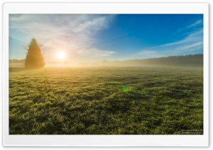 Morning Mist, Glowing Sunrise Ultra HD Wallpaper for 4K UHD Widescreen desktop, tablet & smartphone