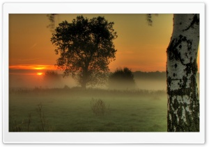 Morning Moment HD Wide Wallpaper for Widescreen