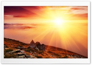 Morning Sun HD Wide Wallpaper for Widescreen