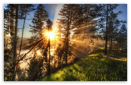 Morning Sunbeams ❤ 4K UHD Wallpaper for Wide 16:10 5:3 Widescreen WHXGA WQXGA WUXGA WXGA WGA ; 4K UHD 16:9 Ultra High Definition 2160p 1440p 1080p 900p 720p ; Standard 4:3 5:4 3:2 Fullscreen UXGA XGA SVGA QSXGA SXGA DVGA HVGA HQVGA ( Apple PowerBook G4 iPhone 4 3G 3GS iPod Touch ) ; Tablet 1:1 ; iPad 1/2/Mini ; Mobile 4:3 5:3 3:2 16:9 5:4 - UXGA XGA SVGA WGA DVGA HVGA HQVGA ( Apple PowerBook G4 iPhone 4 3G 3GS iPod Touch ) 2160p 1440p 1080p 900p 720p QSXGA SXGA ; Dual 16:10 5:3 16:9 4:3 5:4 WHXGA WQXGA WUXGA WXGA WGA 2160p 1440p 1080p 900p 720p UXGA XGA SVGA QSXGA SXGA ;