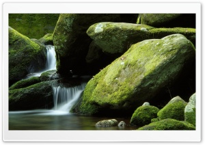 Moss Rocks HD Wide Wallpaper for Widescreen