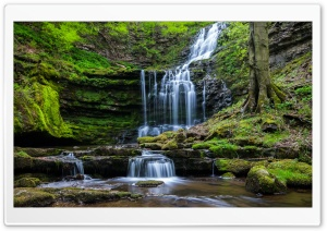Moss Waterfall Rocks HD Wide Wallpaper for Widescreen