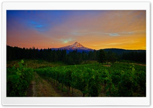 Mount Hood Landscape HD Wide Wallpaper for Widescreen