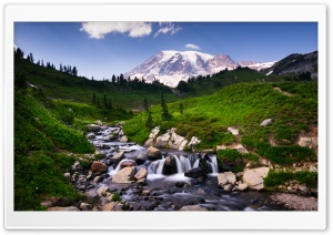 Mount Rainier over Edith Creek HD Wide Wallpaper for 4K UHD Widescreen desktop & smartphone
