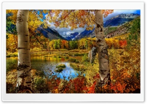 Mountain Autumn HD Wide Wallpaper for Widescreen