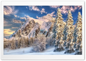 Mountain Behind Forest Snow On The Ground HD Wide Wallpaper for Widescreen