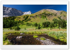 Mountain Creek Spring HD Wide Wallpaper for Widescreen