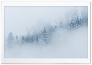 Mountain Forest Landscape, Fog, Winter HD Wide Wallpaper for 4K UHD Widescreen desktop & smartphone