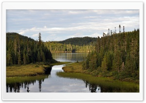 Mountain Lake With Coniferous Forest HD Wide Wallpaper for Widescreen