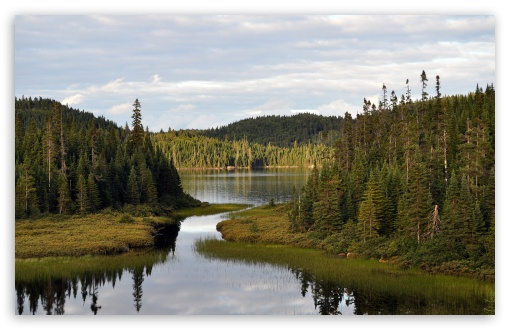 Mountain Lake With Coniferous Forest HD wallpaper for Standard 4:3 5:4 Fullscreen UXGA XGA SVGA QSXGA SXGA ; Wide 16:10 5:3 Widescreen WHXGA WQXGA WUXGA WXGA WGA ; HD 16:9 High Definition WQHD QWXGA 1080p 900p 720p QHD nHD ; Other 3:2 DVGA HVGA HQVGA devices ( Apple PowerBook G4 iPhone 4 3G 3GS iPod Touch ) ; Mobile VGA WVGA iPhone iPad PSP Phone - VGA QVGA Smartphone ( PocketPC GPS iPod Zune BlackBerry HTC Samsung LG Nokia Eten Asus ) WVGA WQVGA Smartphone ( HTC Samsung Sony Ericsson LG Vertu MIO ) HVGA Smartphone ( Apple iPhone iPod BlackBerry HTC Samsung Nokia ) Sony PSP Zune HD Zen ; Tablet 2 Android ; Dual 5:4 QSXGA SXGA ;