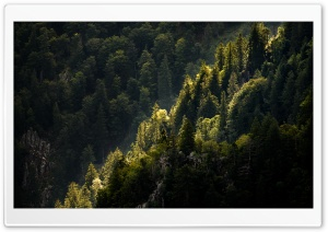 Mountain Landscape, Nature HD Wide Wallpaper for 4K UHD Widescreen desktop & smartphone