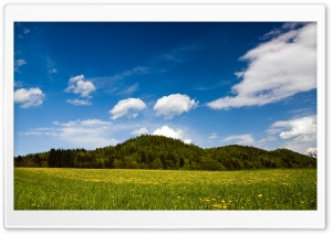 Mountain Meadow HD Wide Wallpaper for Widescreen