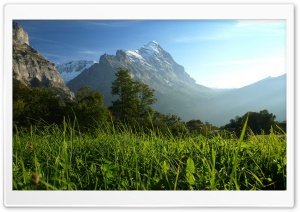 Mountain Pasture 3 HD Wide Wallpaper for Widescreen