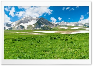 Mountain Pasture, Spring HD Wide Wallpaper for Widescreen