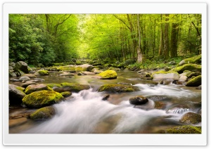 Mountain Stream Ultra HD Wallpaper for 4K UHD Widescreen desktop, tablet & smartphone