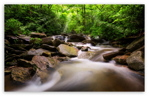 Mountain Stream HD wallpaper for Wide 16:10 5:3 Widescreen WHXGA WQXGA WUXGA WXGA WGA ; HD 16:9 High Definition WQHD QWXGA 1080p 900p 720p QHD nHD ; Standard 4:3 5:4 3:2 Fullscreen UXGA XGA SVGA QSXGA SXGA DVGA HVGA HQVGA devices ( Apple PowerBook G4 iPhone 4 3G 3GS iPod Touch ) ; Tablet 1:1 ; iPad 1/2/Mini ; Mobile 4:3 5:3 3:2 16:9 5:4 - UXGA XGA SVGA WGA DVGA HVGA HQVGA devices ( Apple PowerBook G4 iPhone 4 3G 3GS iPod Touch ) WQHD QWXGA 1080p 900p 720p QHD nHD QSXGA SXGA ;