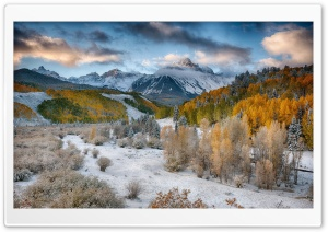 Mountains with Snow and Yellow Trees HD Wide Wallpaper for Widescreen