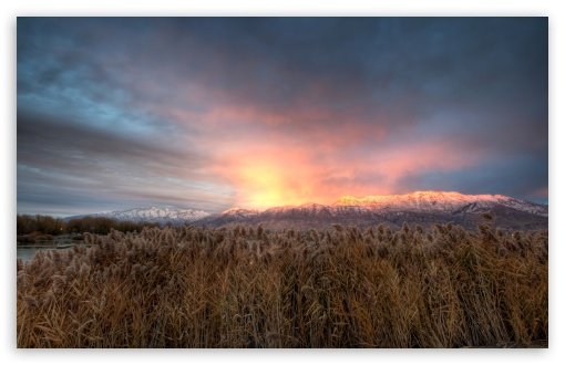 Mt Timpanogos Alpenglow HD wallpaper for Standard 4:3 5:4 Fullscreen UXGA XGA SVGA QSXGA SXGA ; Wide 16:10 5:3 Widescreen WHXGA WQXGA WUXGA WXGA WGA ; HD 16:9 High Definition WQHD QWXGA 1080p 900p 720p QHD nHD ; Other 3:2 DVGA HVGA HQVGA devices ( Apple PowerBook G4 iPhone 4 3G 3GS iPod Touch ) ; Mobile VGA WVGA iPhone iPad PSP Phone - VGA QVGA Smartphone ( PocketPC GPS iPod Zune BlackBerry HTC Samsung LG Nokia Eten Asus ) WVGA WQVGA Smartphone ( HTC Samsung Sony Ericsson LG Vertu MIO ) HVGA Smartphone ( Apple iPhone iPod BlackBerry HTC Samsung Nokia ) Sony PSP Zune HD Zen ; Tablet 2 Android 3 DVGA HVGA HQVGA devices ( Apple PowerBook G4 iPhone 4 3G 3GS iPod Touch ) ;