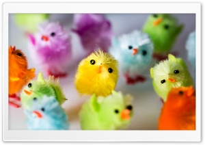 Multi Colored Easter Chicks HD Wide Wallpaper for 4K UHD Widescreen desktop & smartphone