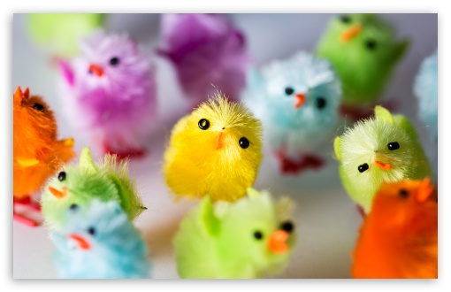 Multi Colored Easter Chicks ❤ 4K UHD Wallpaper for Wide 16:10 5:3 Widescreen WHXGA WQXGA WUXGA WXGA WGA ; UltraWide 21:9 24:10 ; 4K UHD 16:9 Ultra High Definition 2160p 1440p 1080p 900p 720p ; UHD 16:9 2160p 1440p 1080p 900p 720p ; Standard 3:2 Fullscreen DVGA HVGA HQVGA ( Apple PowerBook G4 iPhone 4 3G 3GS iPod Touch ) ; Smartphone 16:9 5:3 2160p 1440p 1080p 900p 720p WGA ; Tablet 1:1 ; Mobile 5:3 3:2 16:9 - WGA DVGA HVGA HQVGA ( Apple PowerBook G4 iPhone 4 3G 3GS iPod Touch ) 2160p 1440p 1080p 900p 720p ;