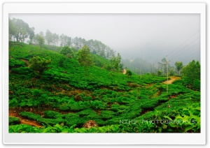 MUNNAR HD Wide Wallpaper for Widescreen