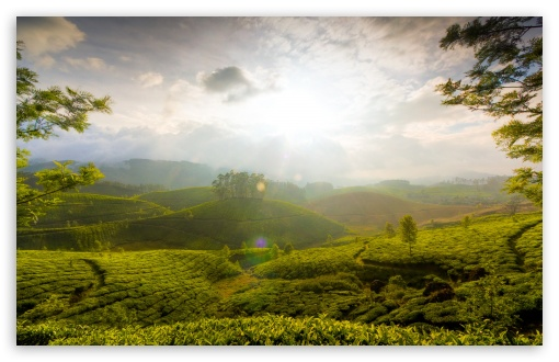 Munnar Hill, India ❤ 4K UHD Wallpaper for Wide 16:10 5:3 Widescreen WHXGA WQXGA WUXGA WXGA WGA ; 4K UHD 16:9 Ultra High Definition 2160p 1440p 1080p 900p 720p ; Standard 4:3 5:4 3:2 Fullscreen UXGA XGA SVGA QSXGA SXGA DVGA HVGA HQVGA ( Apple PowerBook G4 iPhone 4 3G 3GS iPod Touch ) ; Tablet 1:1 ; iPad 1/2/Mini ; Mobile 4:3 5:3 3:2 16:9 5:4 - UXGA XGA SVGA WGA DVGA HVGA HQVGA ( Apple PowerBook G4 iPhone 4 3G 3GS iPod Touch ) 2160p 1440p 1080p 900p 720p QSXGA SXGA ; Dual 16:10 5:3 4:3 5:4 WHXGA WQXGA WUXGA WXGA WGA UXGA XGA SVGA QSXGA SXGA ;