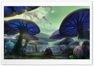 Mushroom Forest HD Wide Wallpaper for Widescreen
