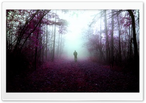 Mystery Walks HD Wide Wallpaper for Widescreen
