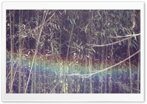 Mystic Rainbow HD Wide Wallpaper for Widescreen