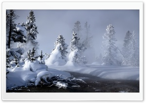 Mystic Winter HD Wide Wallpaper for Widescreen