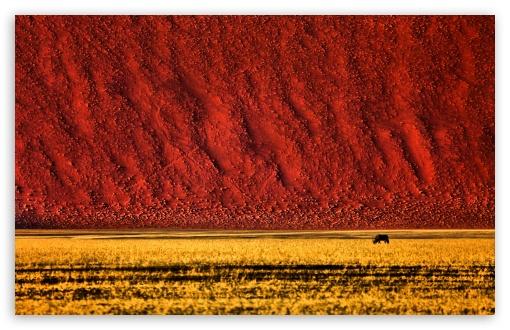 Namibian Landscape Photography ❤ 4K UHD Wallpaper for Wide 16:10 5:3 Widescreen WHXGA WQXGA WUXGA WXGA WGA ; UltraWide 21:9 24:10 ; 4K UHD 16:9 Ultra High Definition 2160p 1440p 1080p 900p 720p ; UHD 16:9 2160p 1440p 1080p 900p 720p ; Standard 4:3 5:4 3:2 Fullscreen UXGA XGA SVGA QSXGA SXGA DVGA HVGA HQVGA ( Apple PowerBook G4 iPhone 4 3G 3GS iPod Touch ) ; Smartphone 16:9 3:2 5:3 2160p 1440p 1080p 900p 720p DVGA HVGA HQVGA ( Apple PowerBook G4 iPhone 4 3G 3GS iPod Touch ) WGA ; Tablet 1:1 ; iPad 1/2/Mini ; Mobile 4:3 5:3 3:2 16:9 5:4 - UXGA XGA SVGA WGA DVGA HVGA HQVGA ( Apple PowerBook G4 iPhone 4 3G 3GS iPod Touch ) 2160p 1440p 1080p 900p 720p QSXGA SXGA ; Dual 16:10 5:3 16:9 4:3 5:4 3:2 WHXGA WQXGA WUXGA WXGA WGA 2160p 1440p 1080p 900p 720p UXGA XGA SVGA QSXGA SXGA DVGA HVGA HQVGA ( Apple PowerBook G4 iPhone 4 3G 3GS iPod Touch ) ;
