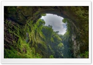 Natural Archway HD Wide Wallpaper for Widescreen