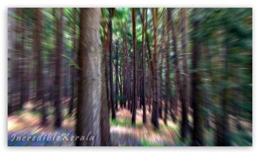 nature ❤ 4K UHD Wallpaper for Mobile 16:9 - 2160p 1440p 1080p 900p 720p ;