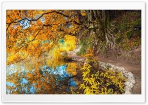 Nature Landscape Ultra HD Wallpaper for 4K UHD Widescreen desktop, tablet & smartphone
