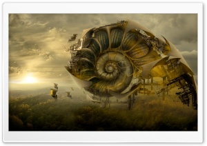 Nautilus Shell HD Wide Wallpaper for Widescreen