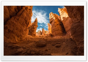 Navajo Loop trail, Bryce Canyon, Utah HD Wide Wallpaper for Widescreen