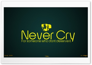 Never Cry For Someone Who Dont Deserve It HD Wide Wallpaper for Widescreen