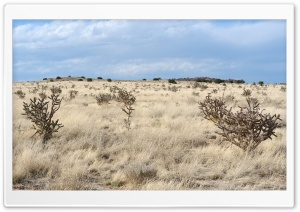 New Mexico Landscape HD Wide Wallpaper for Widescreen