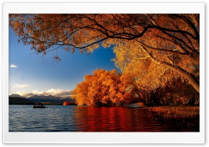 New Zealand Autumn HD Wide Wallpaper for Widescreen