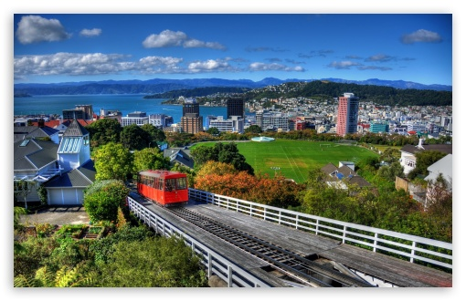 Download New Zealand Houses Wellington From Above HD Wallpaper