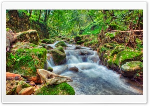 Nice River HD Wide Wallpaper for Widescreen