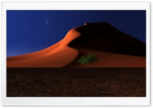 Night In The Desert HD Wide Wallpaper for Widescreen