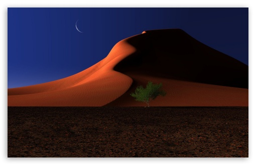 Night In The Desert UltraHD Wallpaper for Wide 16:10 5:3 Widescreen WHXGA WQXGA WUXGA WXGA WGA ; 8K UHD TV 16:9 Ultra High Definition 2160p 1440p 1080p 900p 720p ; Standard 4:3 5:4 3:2 Fullscreen UXGA XGA SVGA QSXGA SXGA DVGA HVGA HQVGA ( Apple PowerBook G4 iPhone 4 3G 3GS iPod Touch ) ; Tablet 1:1 ; iPad 1/2/Mini ; Mobile 4:3 5:3 3:2 16:9 5:4 - UXGA XGA SVGA WGA DVGA HVGA HQVGA ( Apple PowerBook G4 iPhone 4 3G 3GS iPod Touch ) 2160p 1440p 1080p 900p 720p QSXGA SXGA ;