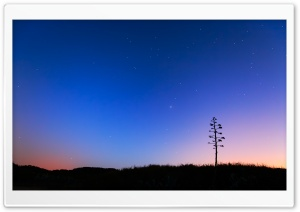 Night Skies HD Wide Wallpaper for 4K UHD Widescreen desktop & smartphone
